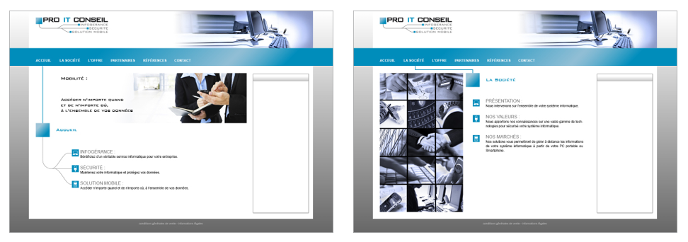 Pro It Conseil design site web